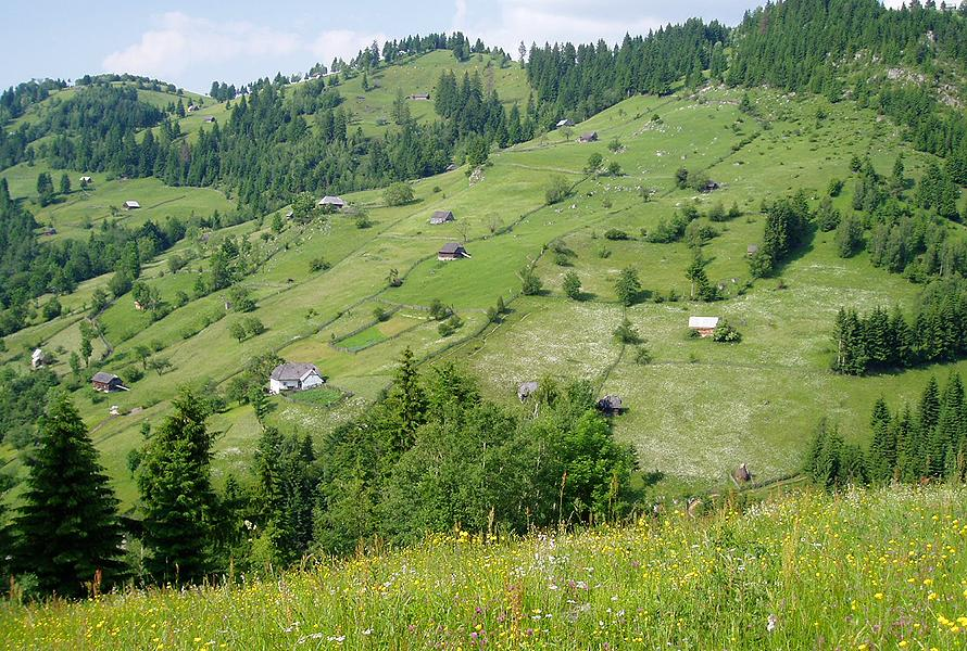 High Nature Value Farming Bucegi Romania
